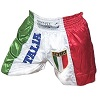 FIGHT-FIT - Muay Thai Shorts / Italien / Stemma